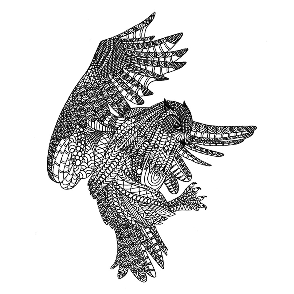 Drawing of an ornated flying owl